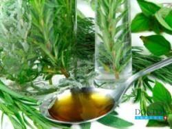 Альтернативная медицина Израиля: Растения лечат инфекционные заболевания