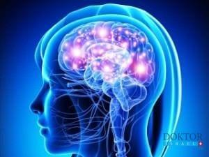 Потеряв мать, израильская исследовательница сделала открытие о раке мозга