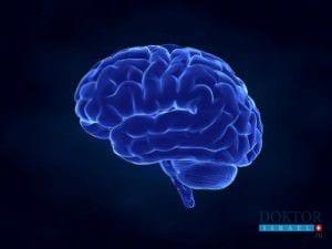 «Обогащенная среда» лечит черепно-мозговые травмы