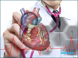 Обучение врачей в Израиле: Хирургия сердца и кровеносных сосудов